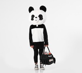 Pottery Barn Toddler Panda Big Head Costume