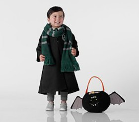 Pottery Barn ToddlerHARRY POTTER™ SLYTHERIN™ Cost