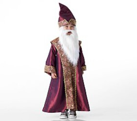 Pottery Barn Toddler HARRY POTTER™ DUMBLEDORE™ Cos