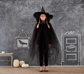 Pottery Barn Adult Halloween Accessories