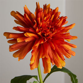 Crate Barrel NewFaux Orange Spider Dahlia Stem