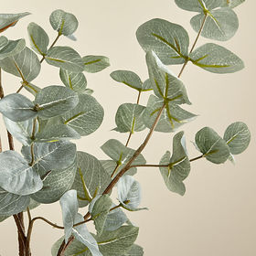 Crate Barrel Faux Eucalyptus Bunch