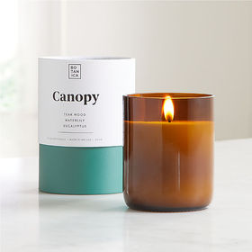 Crate Barrel Botanica Canopy Scented Candle