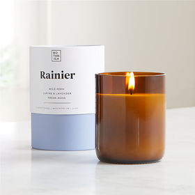Crate Barrel Botanica Rainier Scented Candle