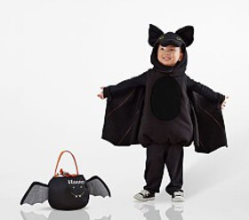 Pottery Barn Toddler Bat Costume