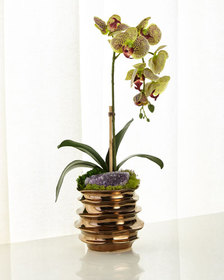 T&C Floral Company Green Orchid with Amethyst in C
