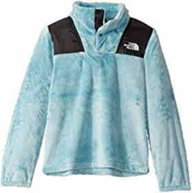 The North Face Kids Oso 1/4 Snap Pullover (Little