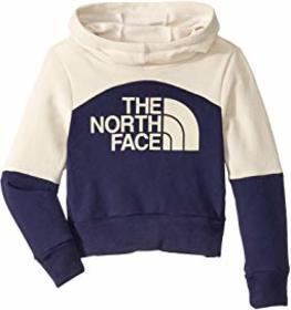 The North Face Kids Metro Logo Pullover Hoodie (Li