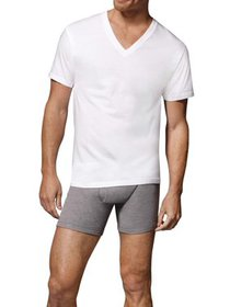 Hanes Men's Comfortsoft Tagless V-Neck T-Shirts, 1