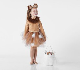 Pottery Barn Lion Tutu Costume