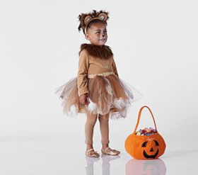 Pottery Barn Toddler Lion Tutu Costume
