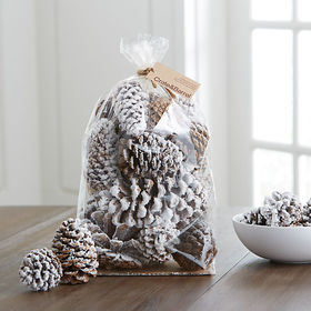 Crate Barrel Small White Flocked Sugar Pinecones