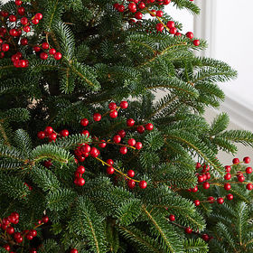 Crate Barrel Red Berry Tree Pick
