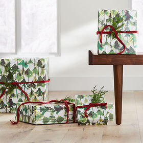 Crate Barrel Brushed Trees Gift Wrap