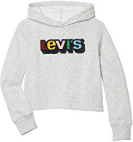 Levi's® Kids Chenile Patch Cropped Hoodie (Big Kid