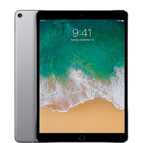 Apple Refurbished 10.5-inch iPad Pro Wi-Fi 512GB -