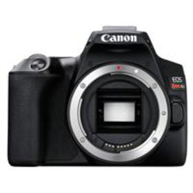 Canon EOS Rebel SL3 DSLR Body - Black With Free Ma