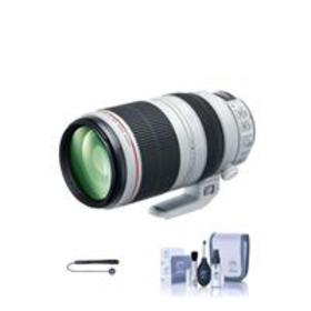 Canon EF 100-400mm f/4.5-5.6L IS II USM with Clean
