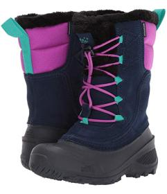 The North Face Kids Shellista Lace (Toddler\u002FL