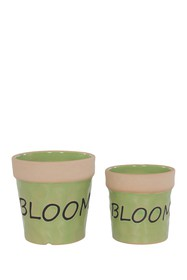 Special T Imports Ceramic Green Bloom Pot - Set of