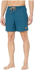 "Quiksilver Everyday Volley 17"" Boardshorts"