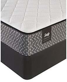 "Essentials Joyfulness 8.5"" Firm Mattress - Queen"