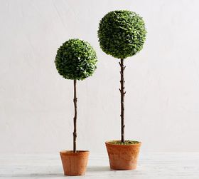 Pottery Barn Faux Boxwood Ball Topiary Trees