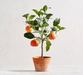 Pottery Barn Faux Potted Tangerine Tree