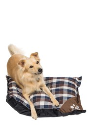 Duck River Textile Chocolate Hasley X-Large Pet Ma