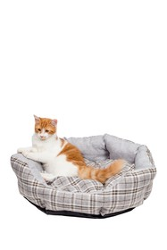 Duck River Textile Harlee Round Pet Bed