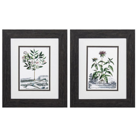 Propac Images® Botanical Munting Garden Wall Décor
