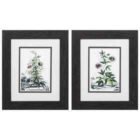 Propac Images® Munting Garden Botanical Wall Décor